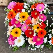 All Gerbera Mixed Three Letter Funeral Tribute